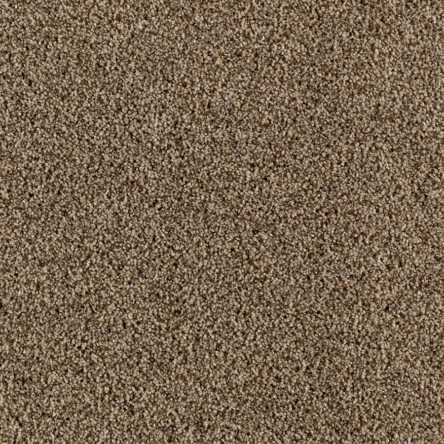 STAINMASTER Beautiful Design II Essentials Nomad Plush Carpet Sample