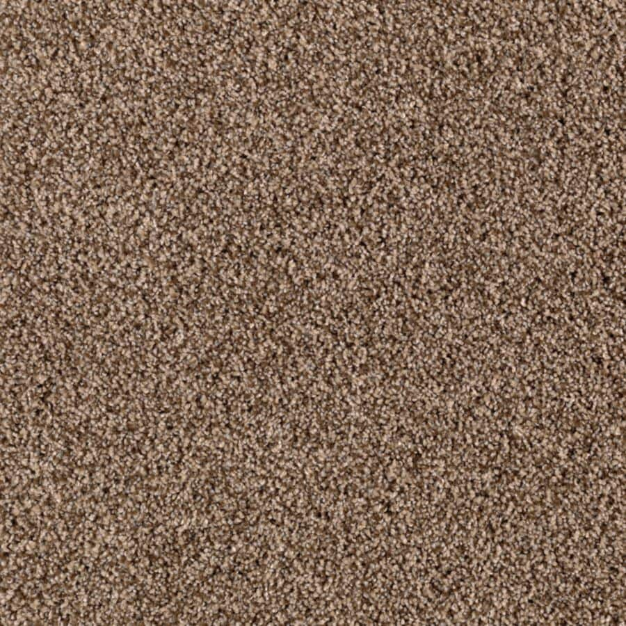 STAINMASTER Essentials Beautiful Design II Falcon Beige Carpet Sample