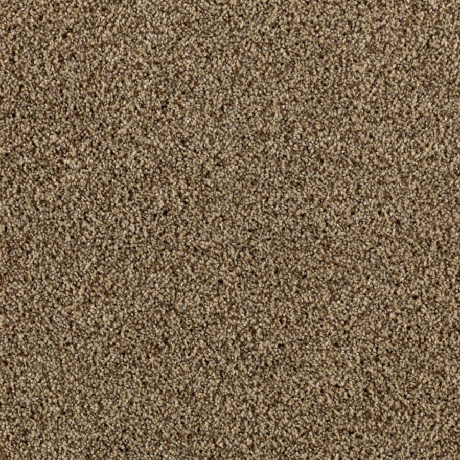 STAINMASTER Essentials Beautiful Design III Hickory Bark Carpet Sample