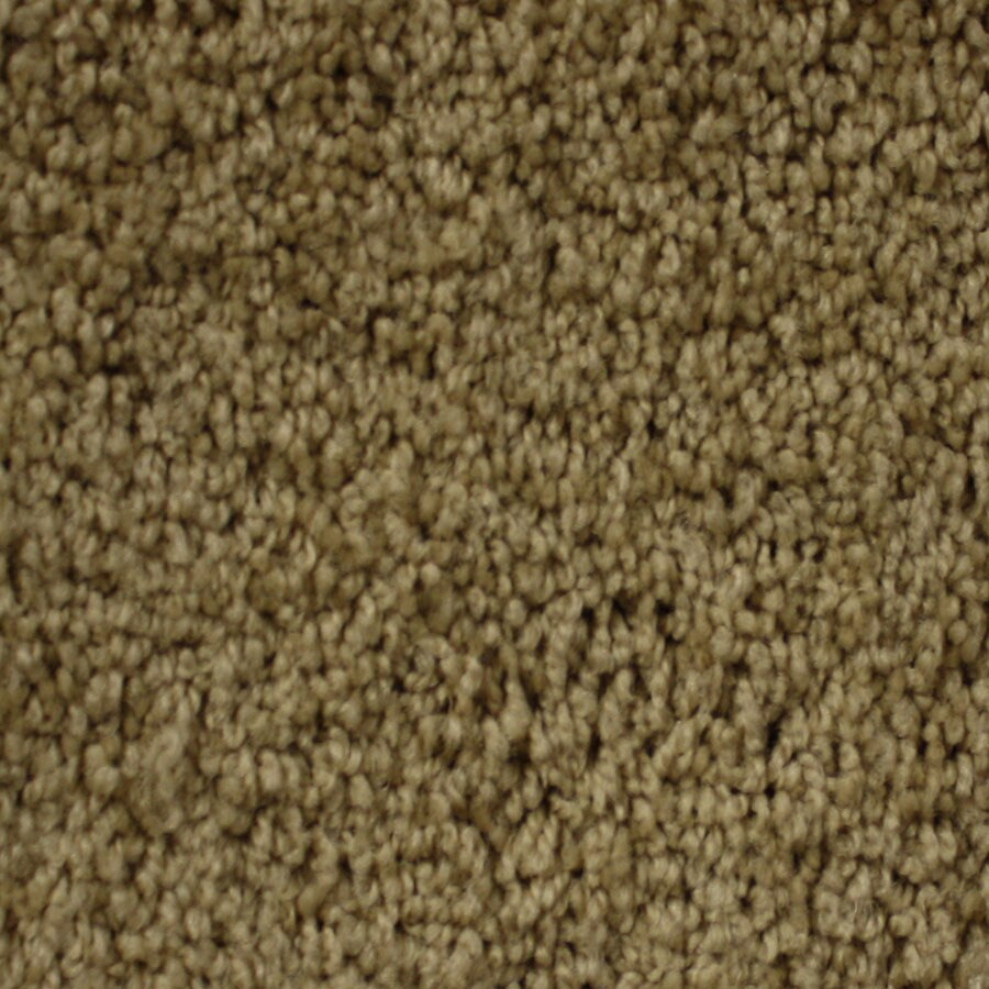 STAINMASTER PetProtect Nitro Cosmic Carpet Sample