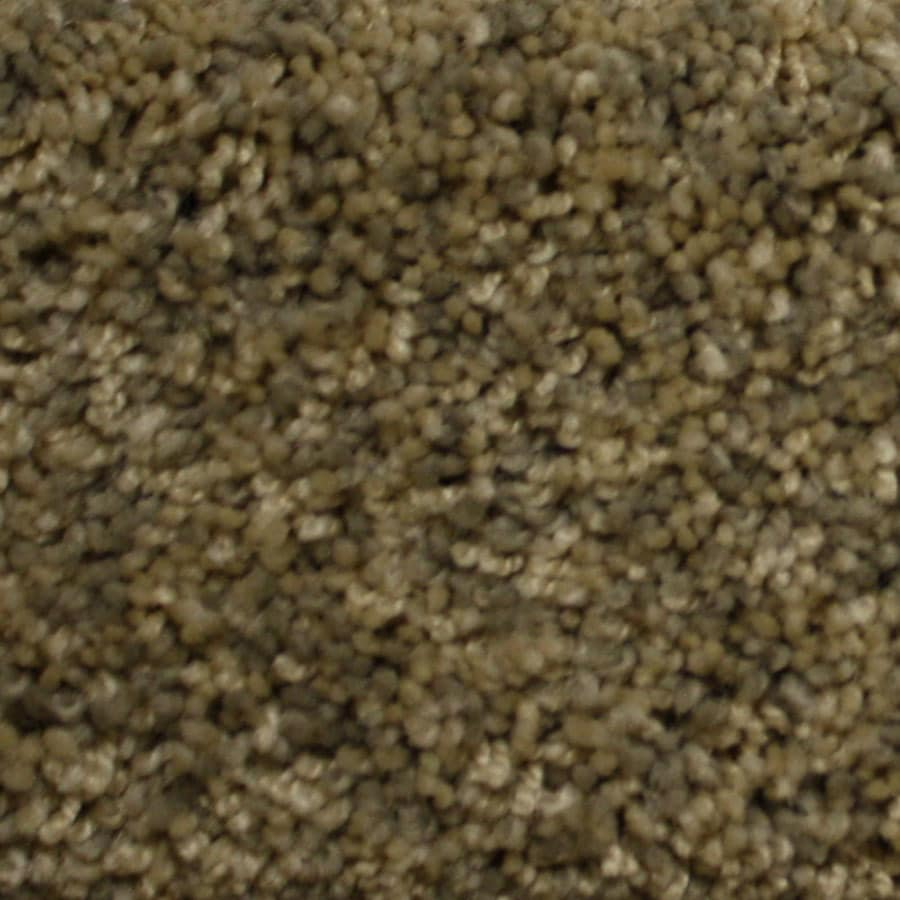 STAINMASTER PetProtect Lexington Backcountry Plush Carpet Sample