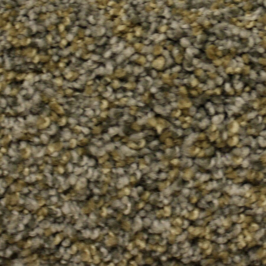 STAINMASTER Lexington PetProtect Terrain Park Plus Carpet Sample