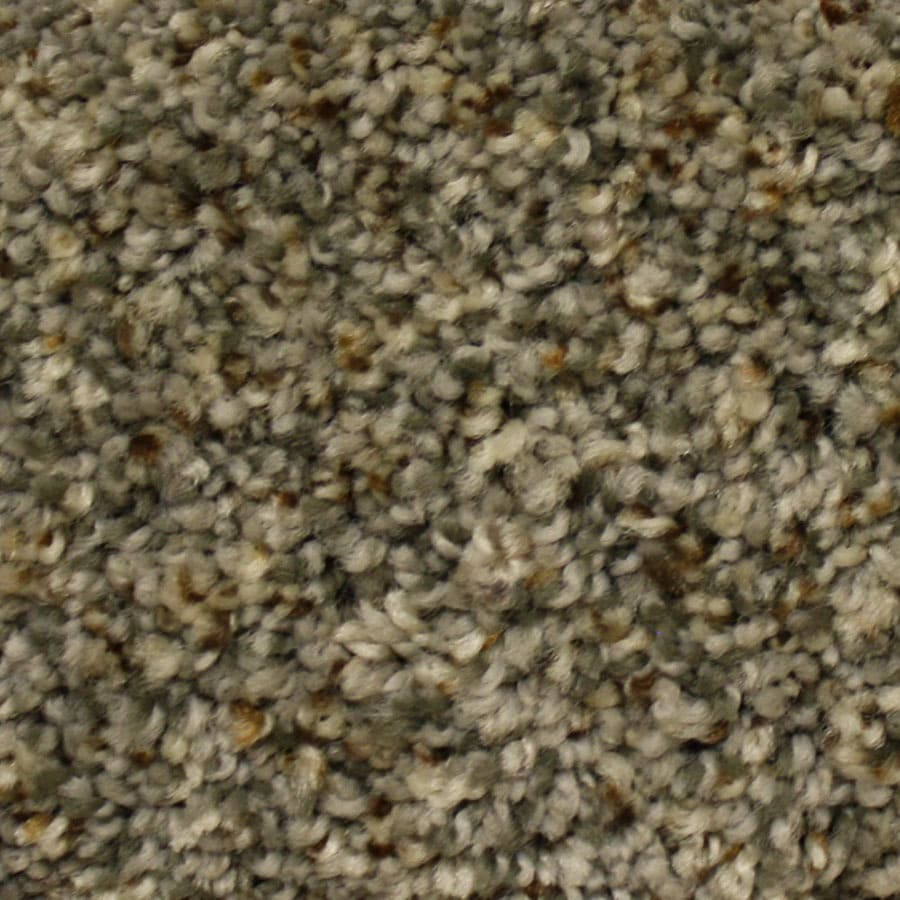 STAINMASTER Lexington PetProtect First Launch Plush Carpet Sample