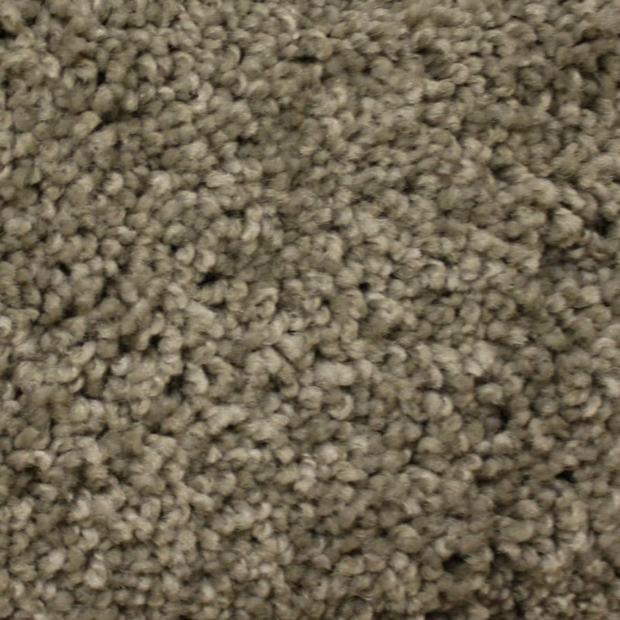 STAINMASTER PetProtect Lexington Canyon Road Carpet Sample