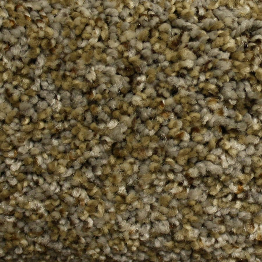 STAINMASTER PetProtect Georgetown Ridge Run Plush Carpet Sample