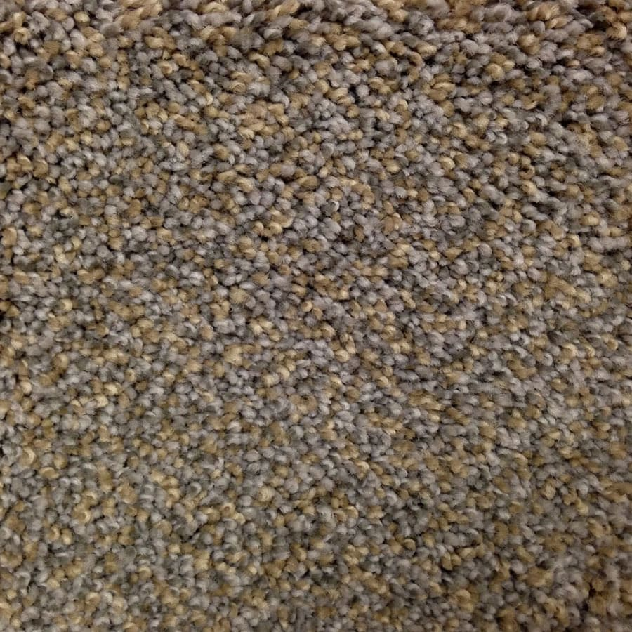 STAINMASTER Georgetown PetProtect Terrain Park Plus Carpet Sample