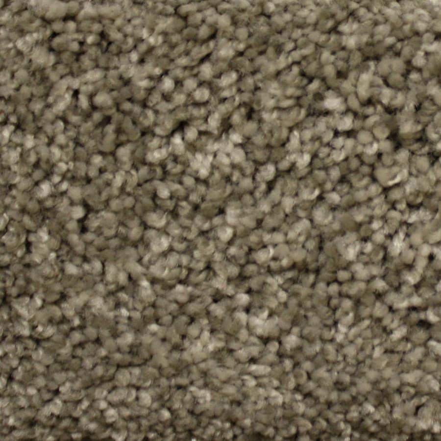 STAINMASTER PetProtect Georgetown Millspring Plush Carpet Sample
