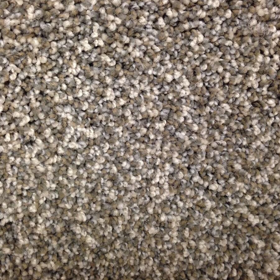 STAINMASTER Georgetown PetProtect North Ridgeline Plush Carpet Sample