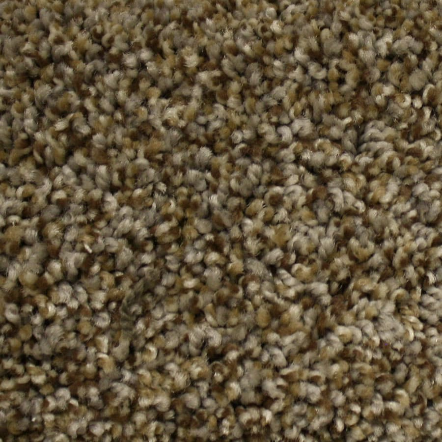 STAINMASTER Georgetown PetProtect Top Elevation Plush Carpet Sample