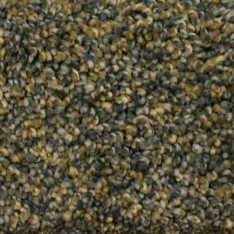 STAINMASTER PetProtect Georgetown New Heights Plush Carpet Sample