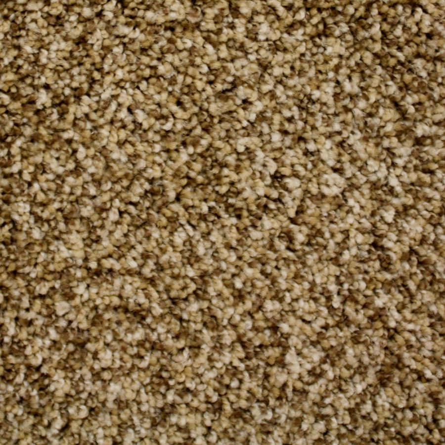 STAINMASTER PetProtect Nitro Galaxy Textured Carpet Sample