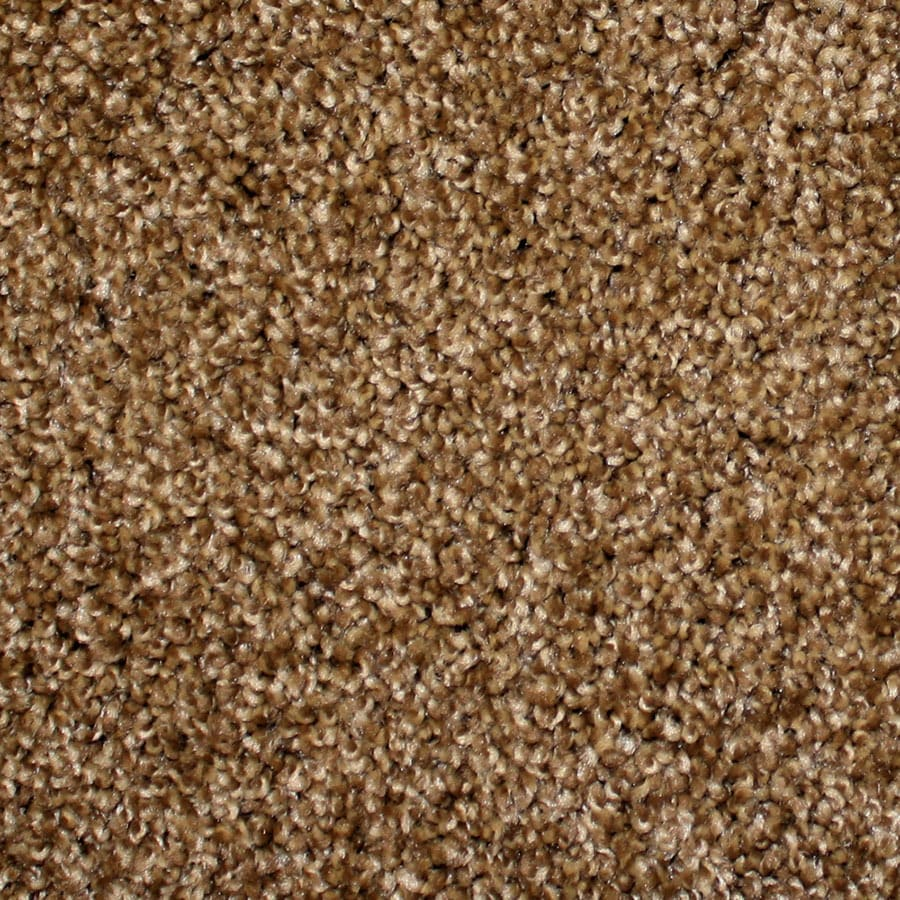 STAINMASTER PetProtect Nitro Stardust Carpet Sample