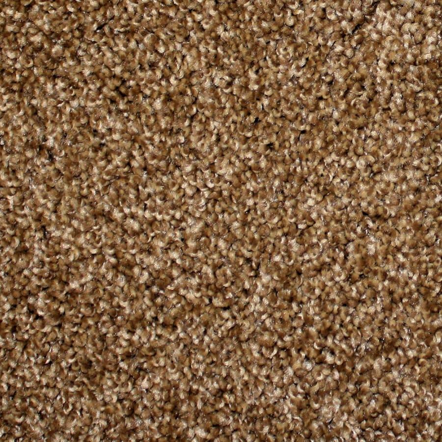 STAINMASTER Nitro PetProtect Stardust Plus Carpet Sample