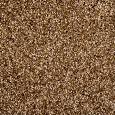 STAINMASTER PetProtect Nitro Stardust Carpet Sample at