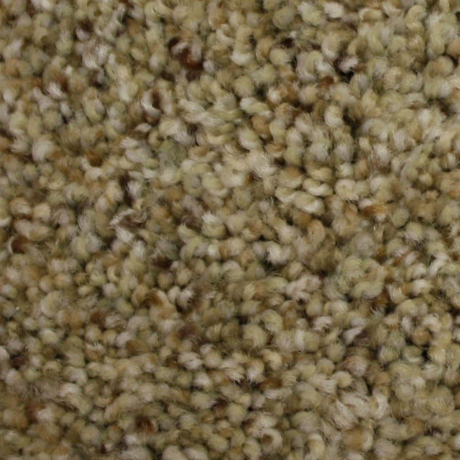 STAINMASTER Side Kick Petprotect Caped Crusader Plus Carpet Sample