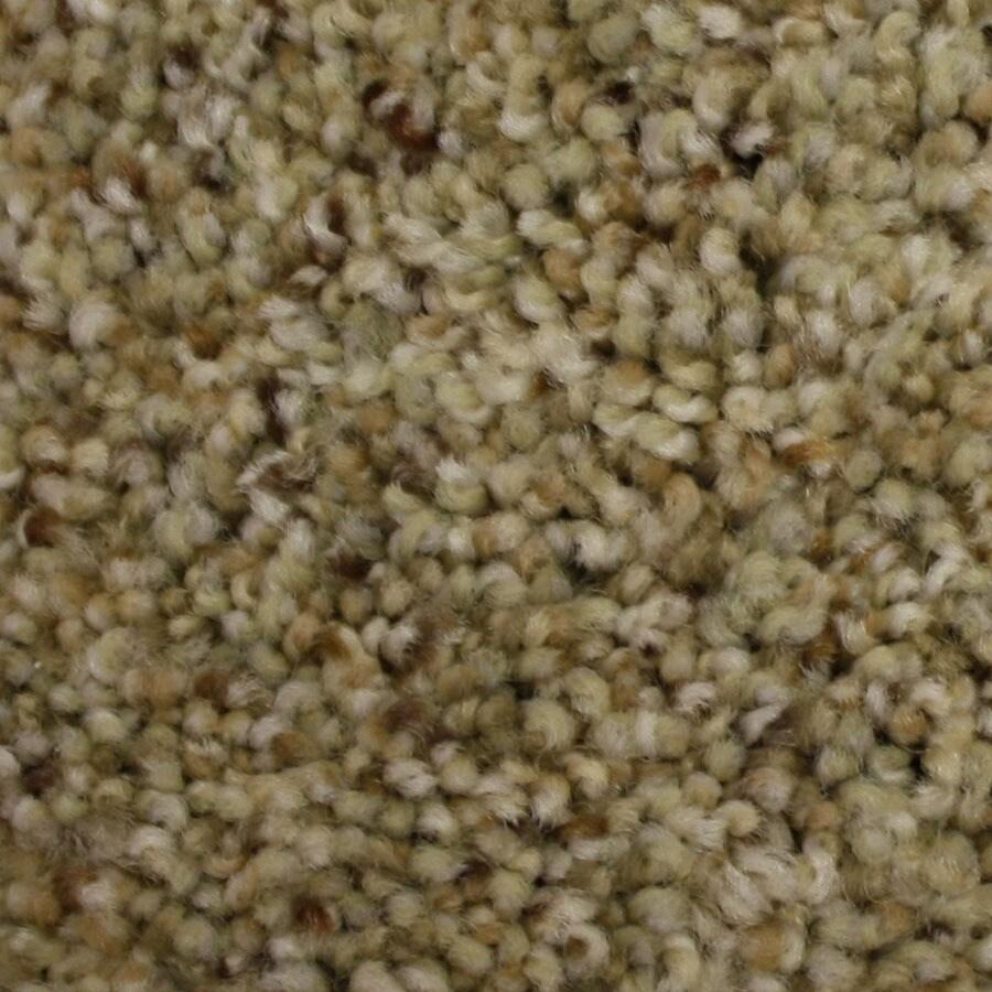 STAINMASTER Side Kick PetProtect Caped Crusader Plush Carpet Sample