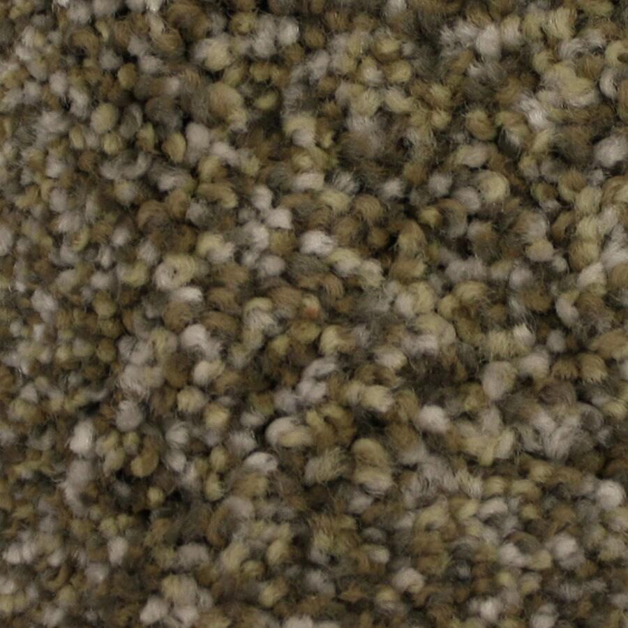STAINMASTER Side Kick Petprotect Devotion Plus Carpet Sample