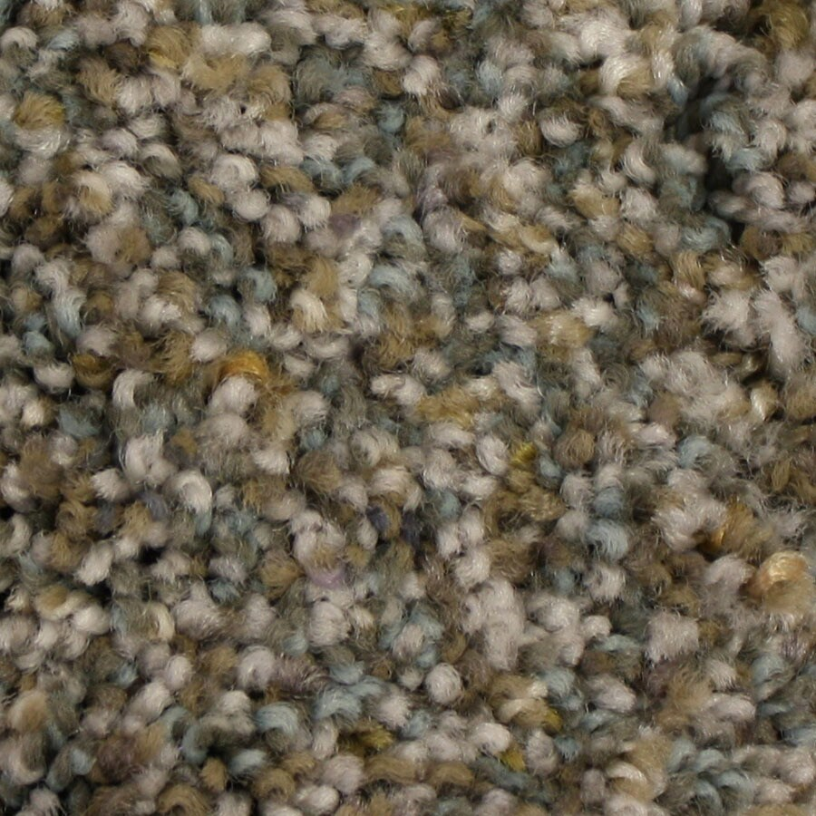 STAINMASTER Side Kick PetProtect Forever Yours Plush Carpet Sample