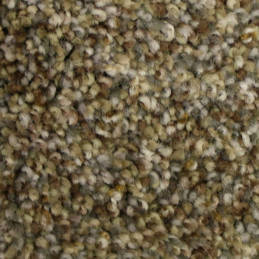 STAINMASTER PetProtect Side Kick Rare Find Carpet Sample