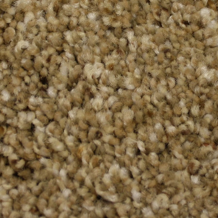 STAINMASTER PetProtect Companion Reliable Plush Carpet Sample