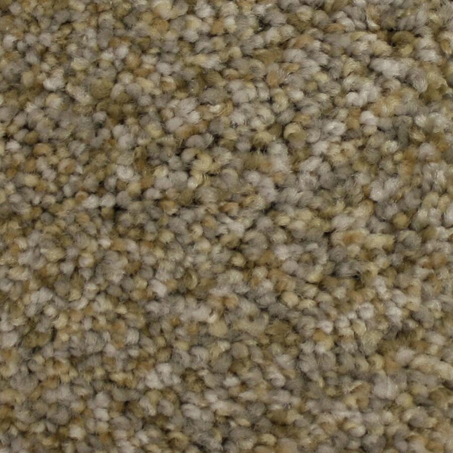 STAINMASTER Kindred Spirit PetProtect Keepsake Plush Carpet Sample