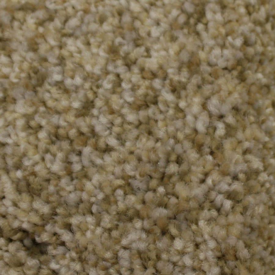 STAINMASTER Soul Mate Petprotect Admiration Plus Carpet Sample