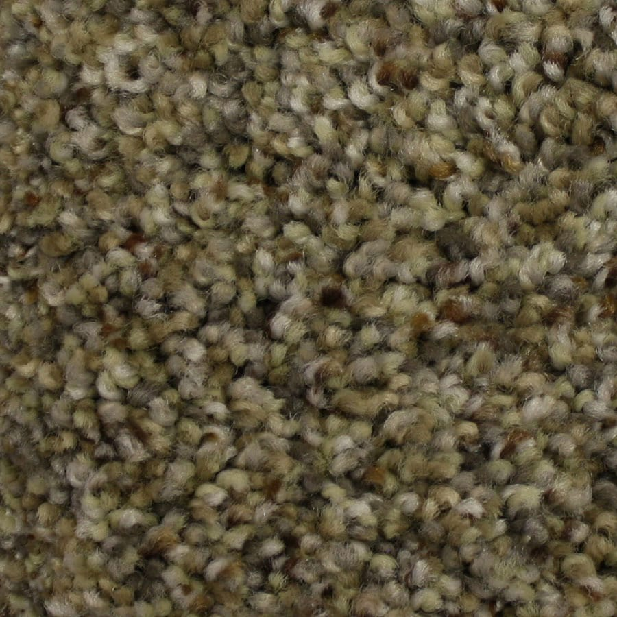 STAINMASTER PetProtect Soul Mate Mentor Plush Carpet Sample