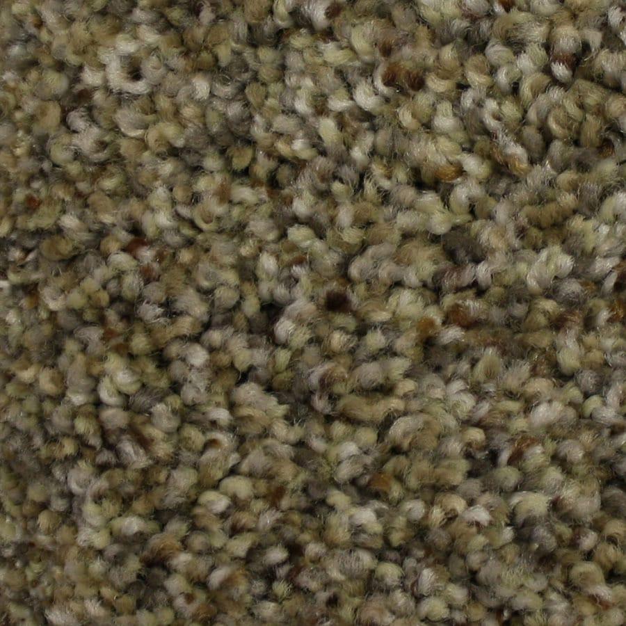 STAINMASTER Soul Mate Petprotect Mentor Plus Carpet Sample