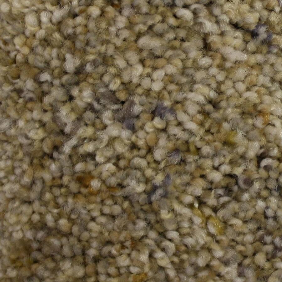 STAINMASTER Soul Mate PetProtect Sweet Honesty Plush Carpet Sample