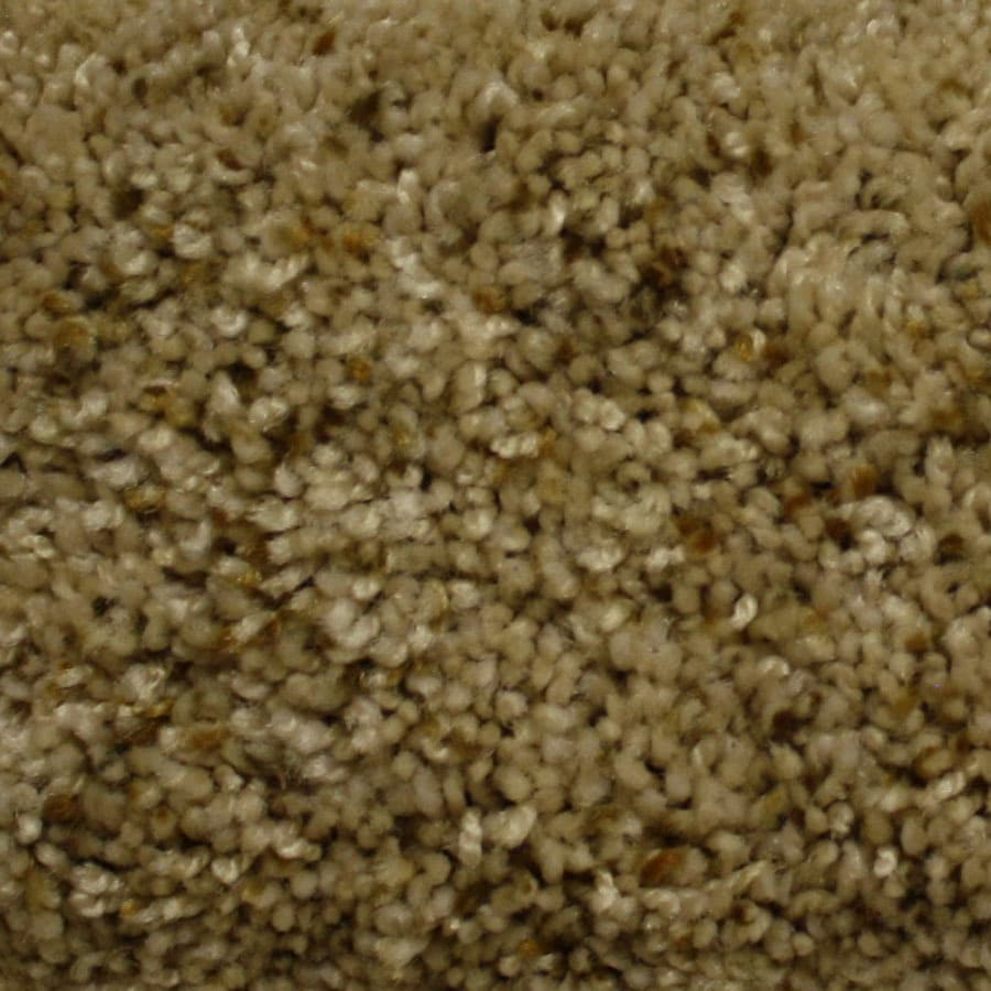 STAINMASTER PetProtect Georgetown Express Custom Design Plush Carpet Sample