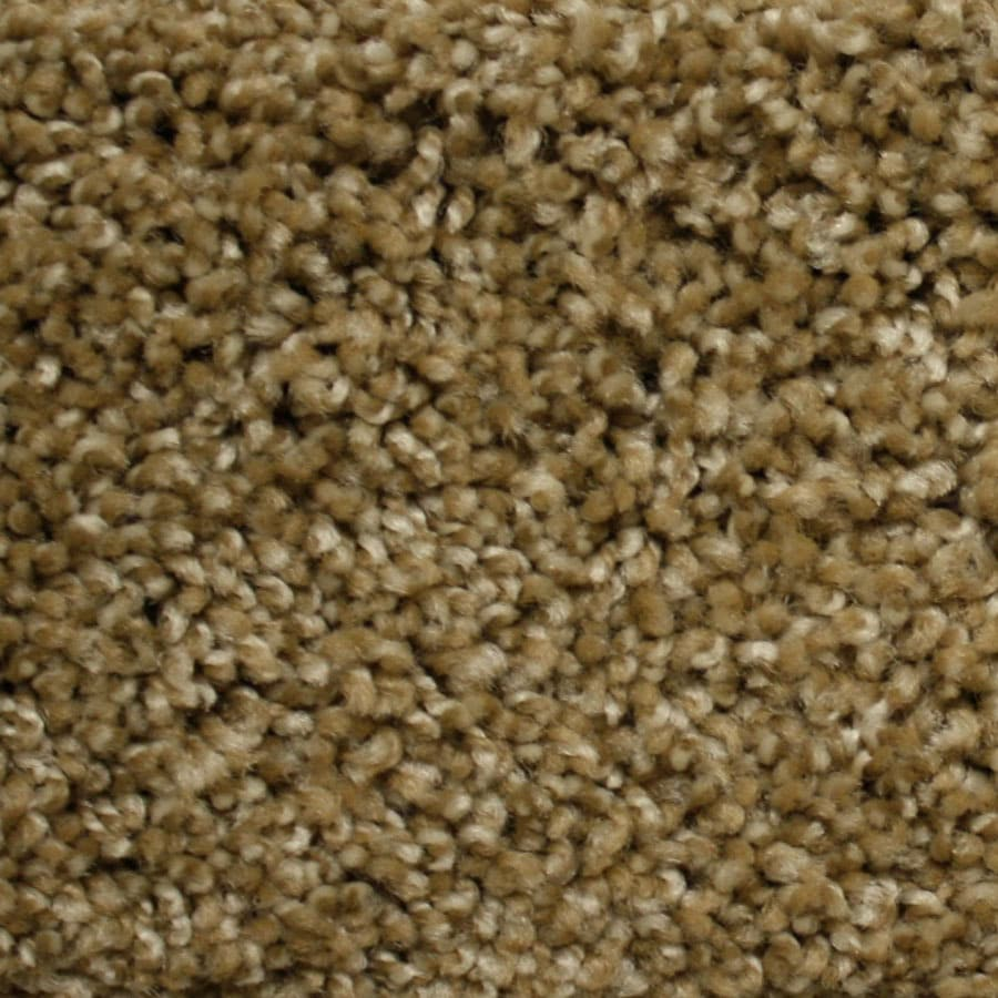 STAINMASTER PetProtect Georgetown Express World Class Plush Carpet Sample