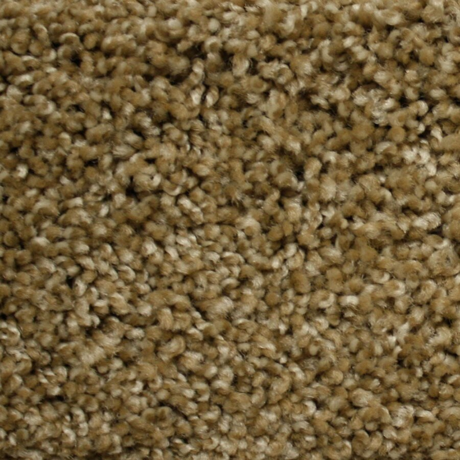 STAINMASTER PetProtect Lexington Express World Class Plush Carpet Sample