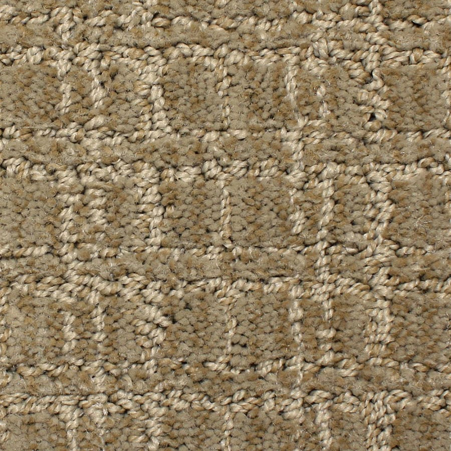 STAINMASTER PetProtect Park Lane Decorative Carpet Sample
