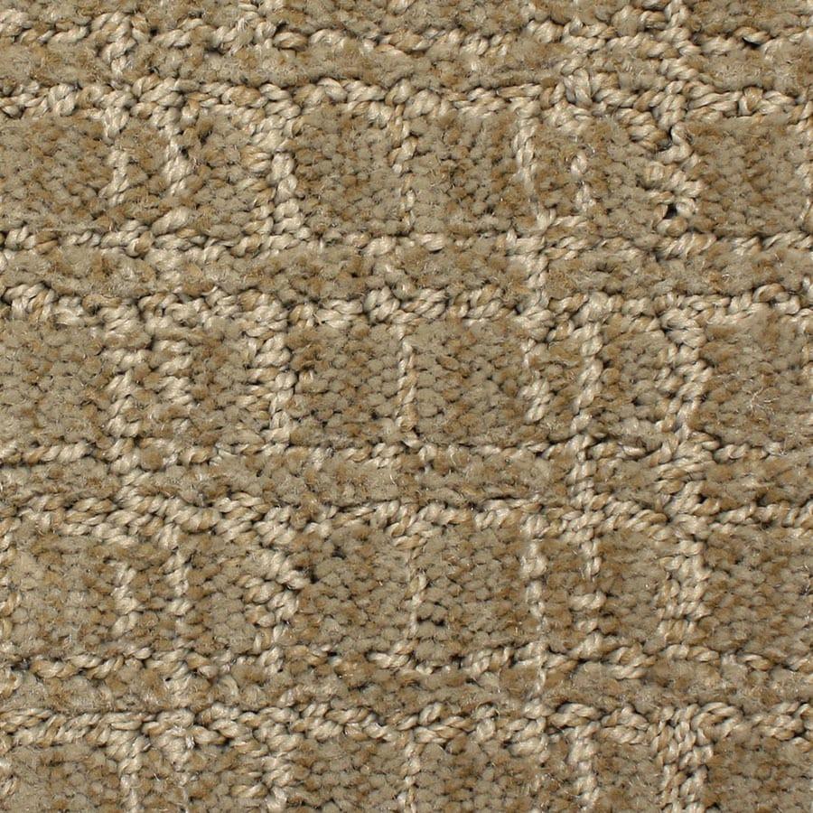 STAINMASTER Park Lane PetProtect Decorative Cut and Loop Carpet Sample