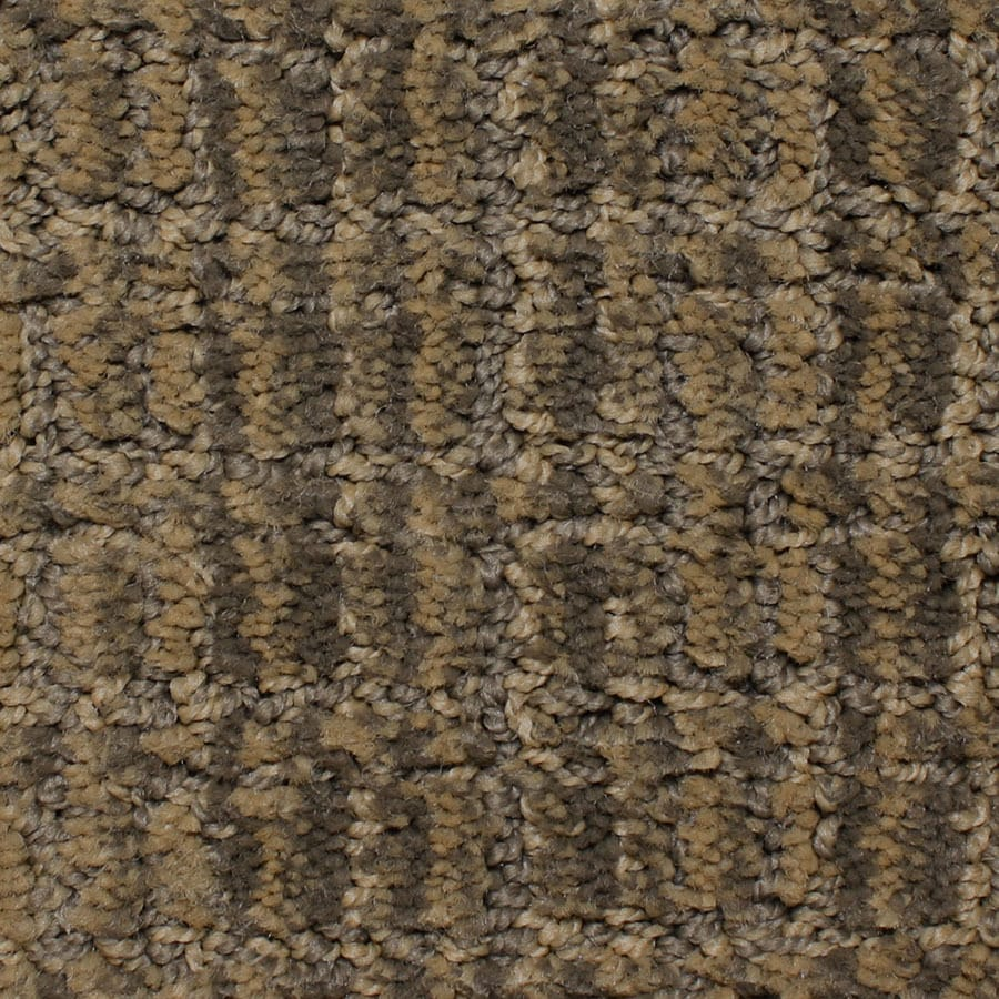 STAINMASTER PetProtect Park Lane Engraved Berber/Loop Carpet Sample