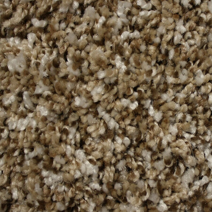 STAINMASTER Essentials Palmer Lifestyle Plush Carpet Sample
