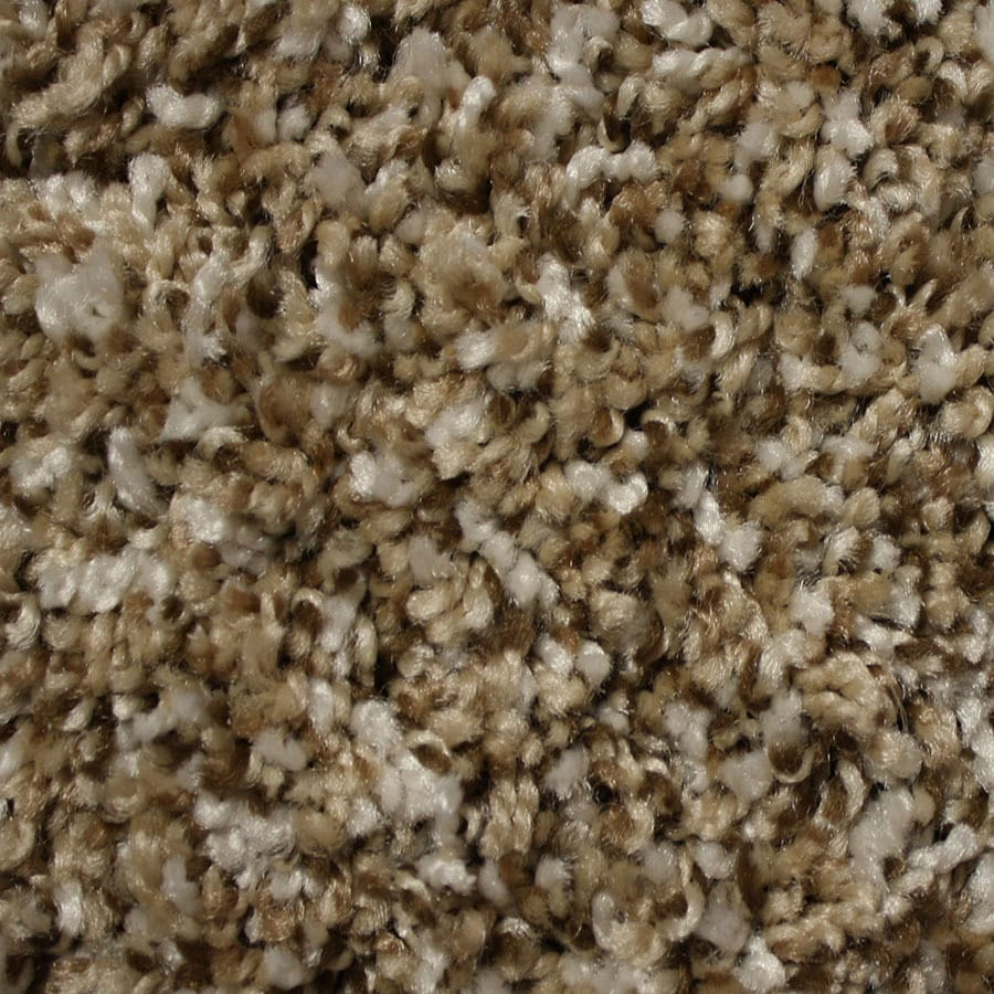 STAINMASTER Essentials Palmer Lifestyle Carpet Sample