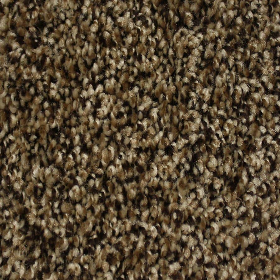 STAINMASTER Palmer Essentials Pioneer Plush Carpet Sample