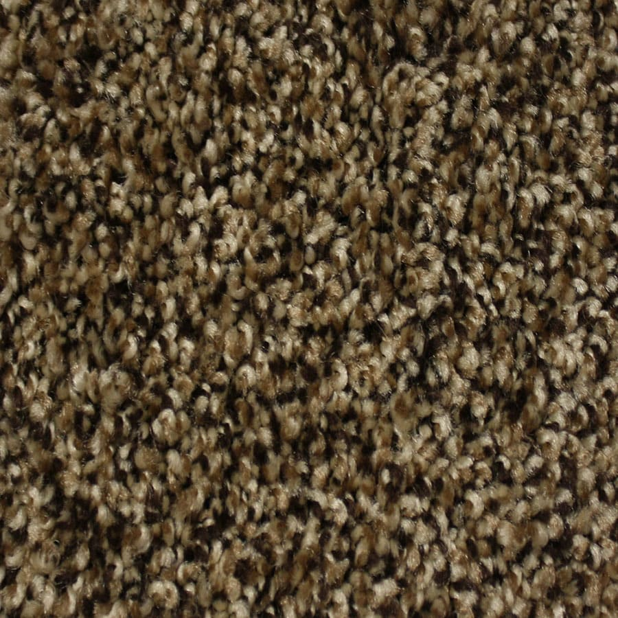 STAINMASTER Essentials Palmer Pioneer Carpet Sample