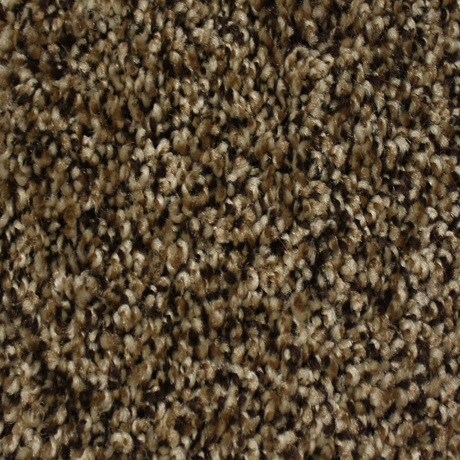 STAINMASTER Essentials Palmer Pioneer Plush Carpet Sample