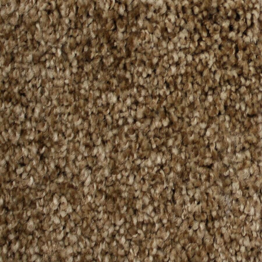 STAINMASTER Essentials Notorious Delamar Carpet Sample