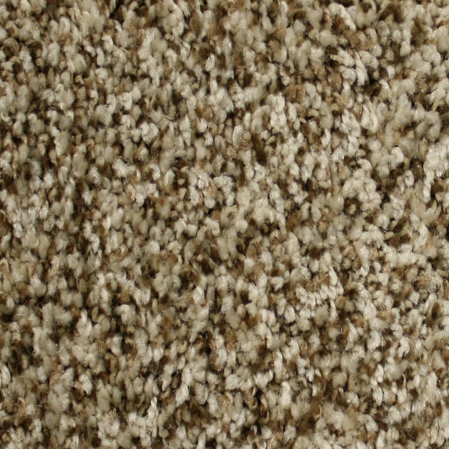 Shop STAINMASTER Essentials Notorious Dodge City Carpet Sample at Lowes.com