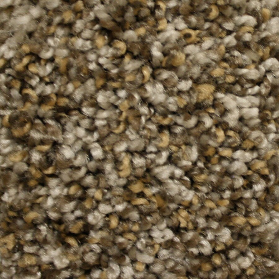 STAINMASTER Cadiz Essentials Modern Way Plush Carpet Sample