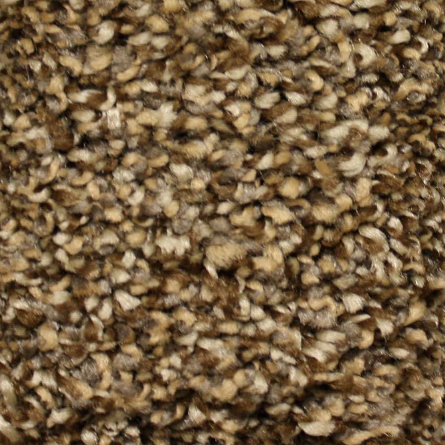 STAINMASTER Cadiz Essentials Full Range Plus Carpet Sample