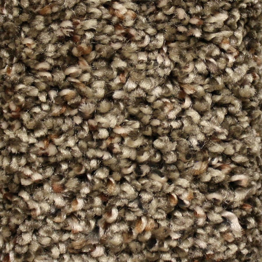 STAINMASTER Essentials Cadiz Main Ticket Carpet Sample