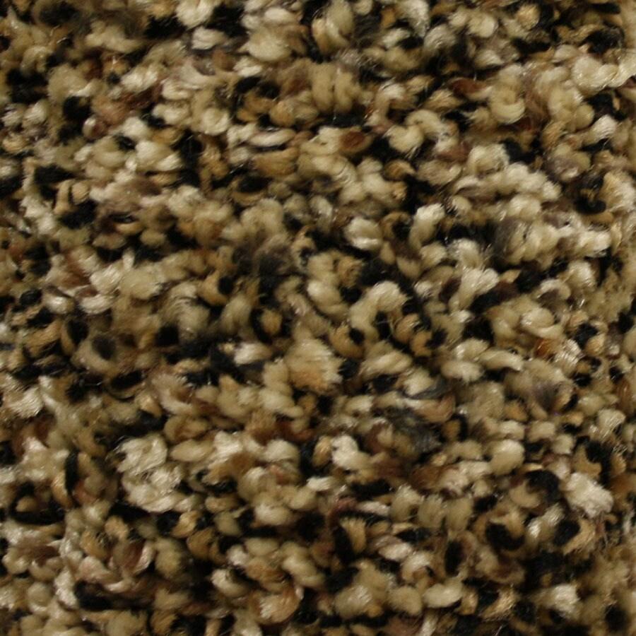 STAINMASTER Essentials Cadiz Freedom Pass Carpet Sample