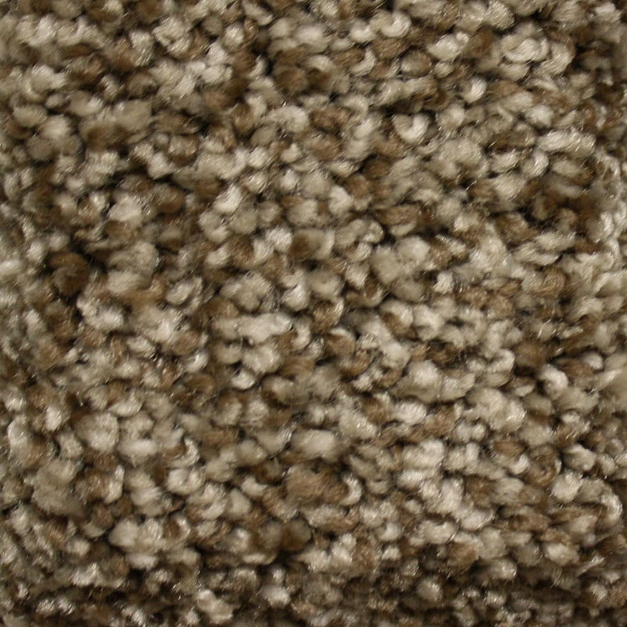 STAINMASTER Valmeyer Essentials Tonbridge Plus Carpet Sample