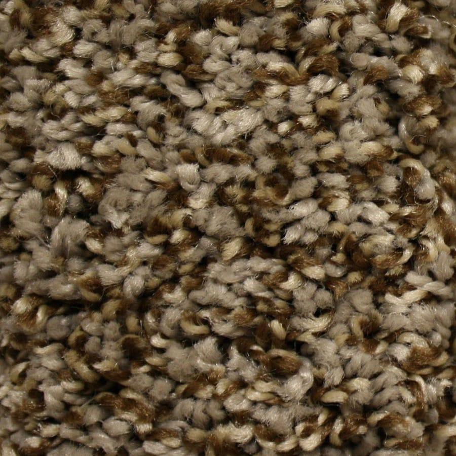 STAINMASTER Essentials Valmeyer Lane Plush Carpet Sample