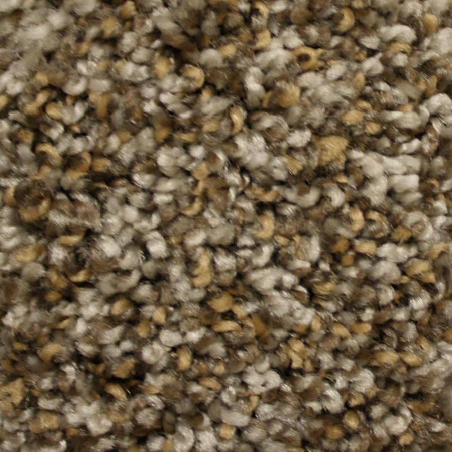 STAINMASTER Valmeyer Essentials Modern Way Plush Carpet Sample