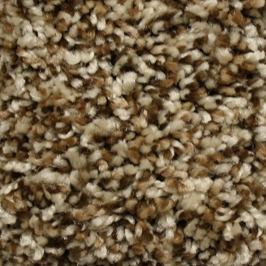 STAINMASTER Essentials Valmeyer Heritage Plush Carpet Sample